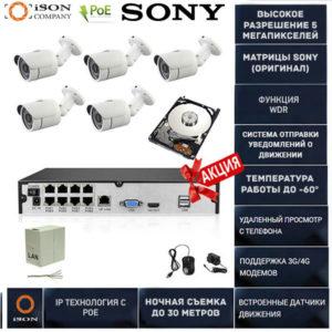 Готовая система видеонаблюдения на 5 камер 4 мегапикселя с POE Айсон ALFA-5 с жестким диском