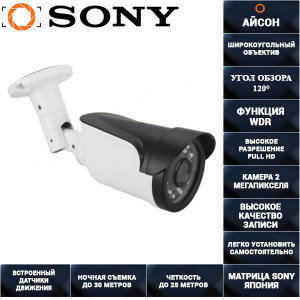 IP камера видеонаблюдения 2 мегапикселя с POE IP20S-RD