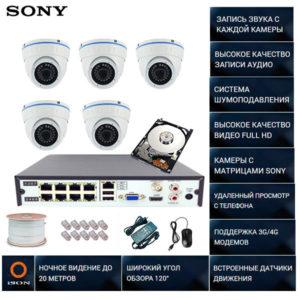 IP система видеонаблюдения со звуком НА 5 КАМЕР Айсон МОЛ-5 с жестким диском 1000ГБ