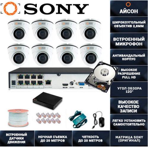 IP система видеонаблюдения со звуком Айсон МОЛ-8 с жестким диском 1000ГБ