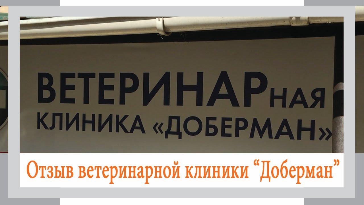 Системы видеонаблюдения с бесплатной доставкой по РФ!